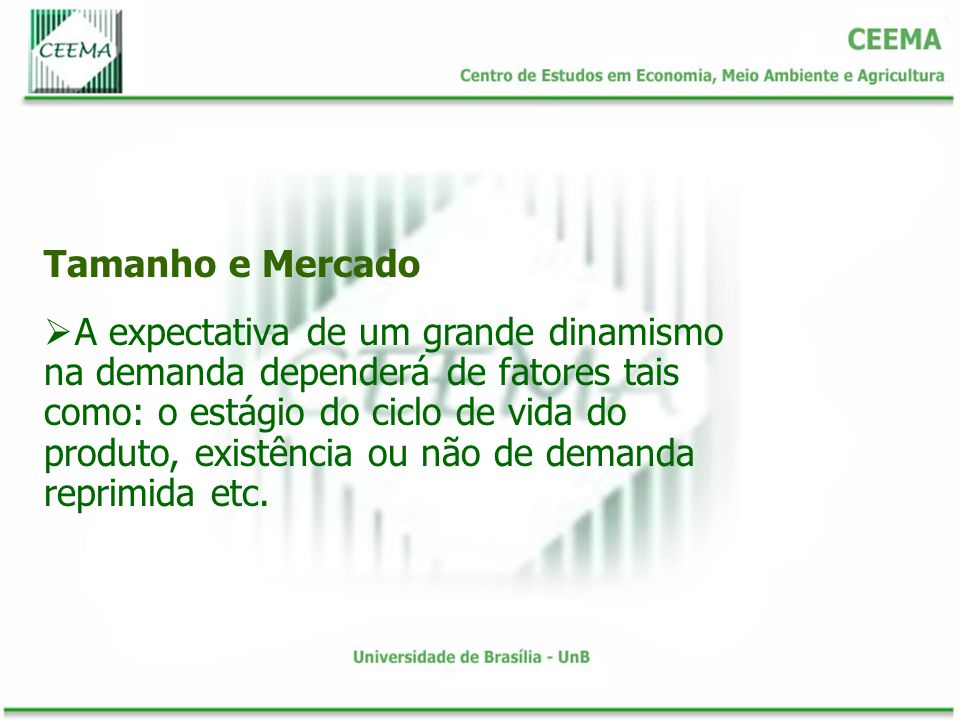 Tamanho e Mercado A expectativa de um grande dinamismo na demanda dependerá de fatores tais como: o estágio do ciclo de vida do produto, existência ou não de demanda reprimida etc.