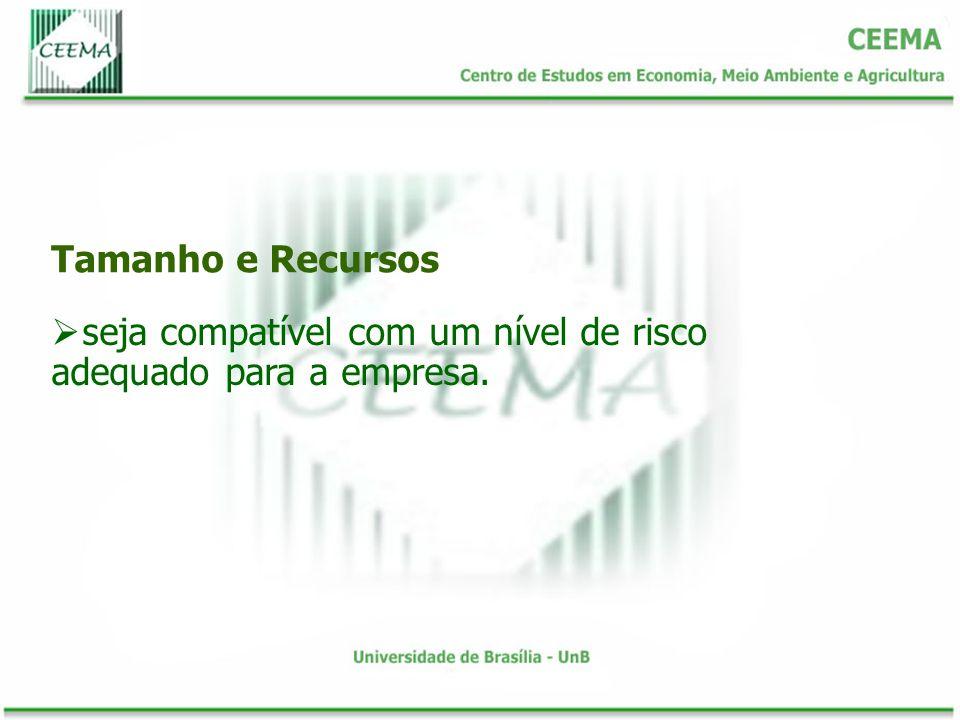 Tamanho e Recursos seja compatível com um nível de risco adequado para a empresa.