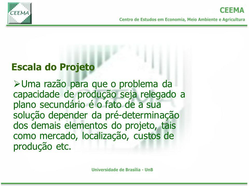 Escala do Projeto Uma razão para que o problema da capacidade de produção seja relegado a plano secundário é o fato de a sua solução depender da pré-determinação dos demais elementos do projeto, tais como mercado, localização, custos de produção etc.