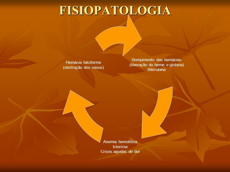 FISIOPATOLOGIA Rompimento das hemácias (liberação do heme e globina) Bilirrubina Anemia hemolítica Icterícia Crises agudas de dor Hemácia falciforme (