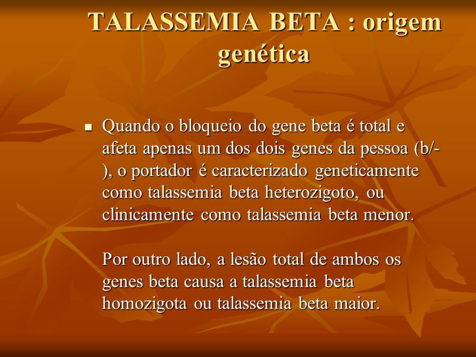 TALASSEMIA BETA : origem genética Quando o bloqueio do gene beta é total e afeta apenas um dos dois genes da pessoa (b/- ), o portador é caracterizado