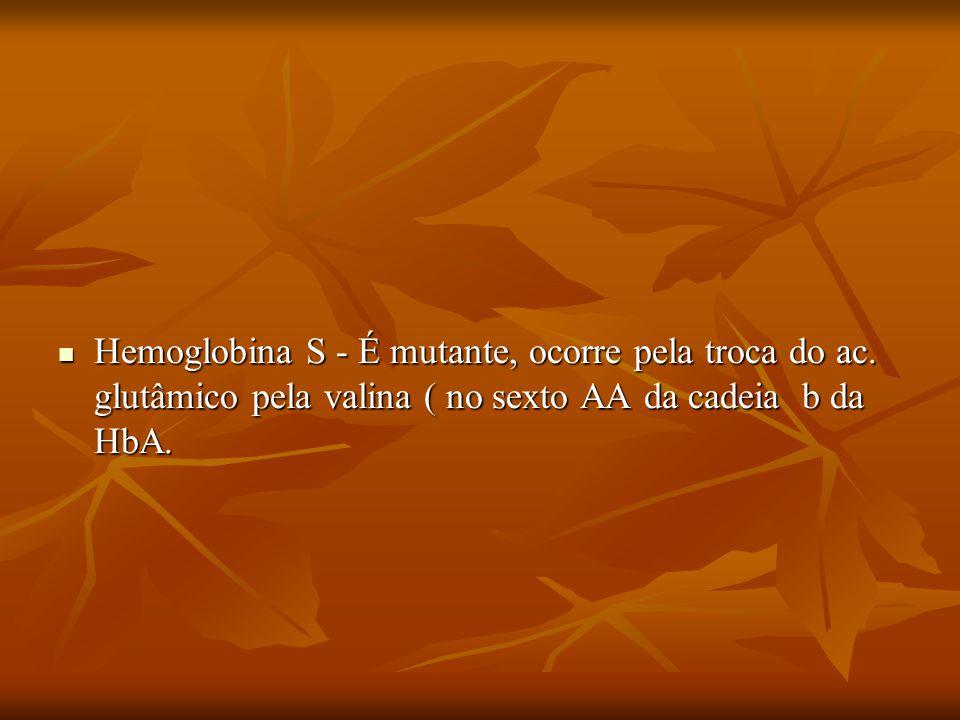 Hemoglobina S - É mutante, ocorre pela troca do ac. glutâmico pela valina ( no sexto AA da cadeia b da HbA. Hemoglobina S - É mutante, ocorre pela tro