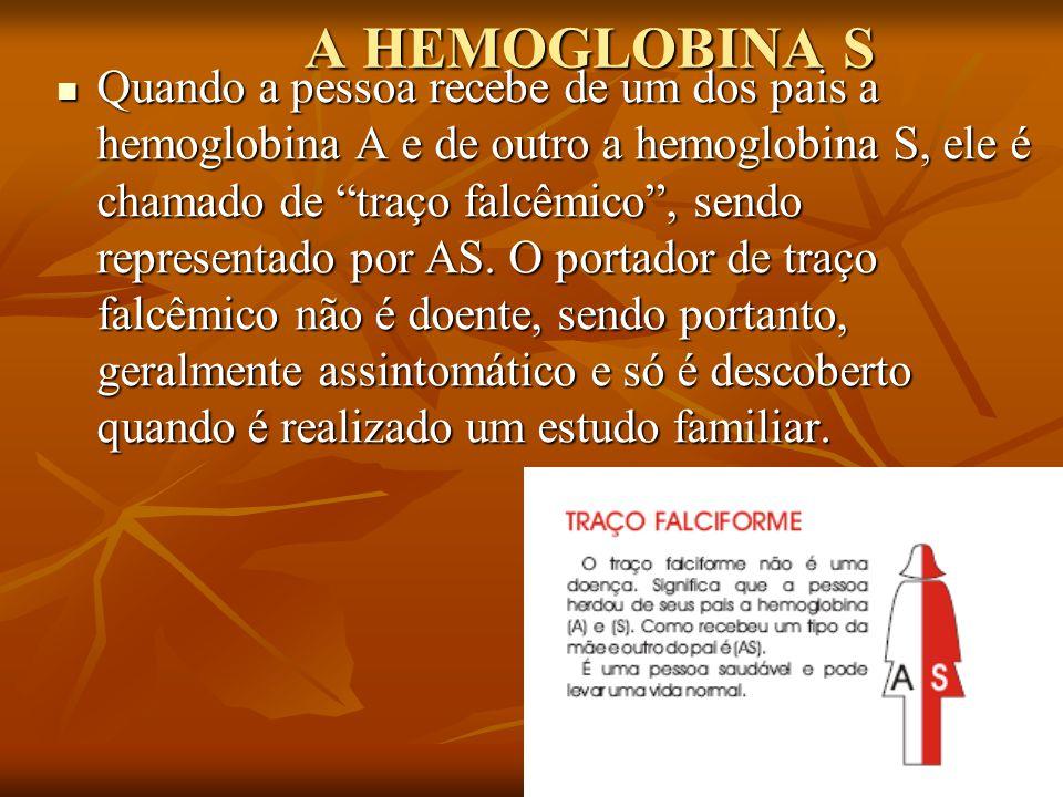 A HEMOGLOBINA S Quando a pessoa recebe de um dos pais a hemoglobina A e de outro a hemoglobina S, ele é chamado de traço falcêmico, sendo representado