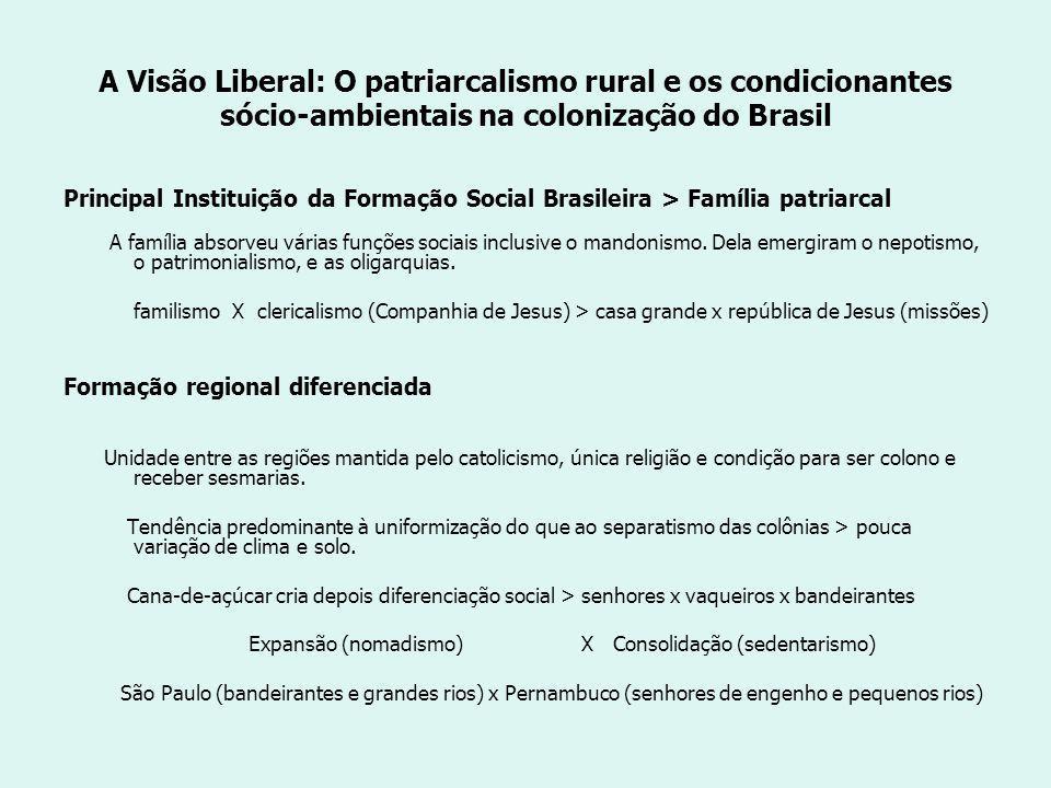 A Visão Liberal: O patriarcalismo rural e os condicionantes sócio-ambientais na colonização do Brasil Principal Instituição da Formação Social Brasileira > Família patriarcal A família absorveu várias funções sociais inclusive o mandonismo.