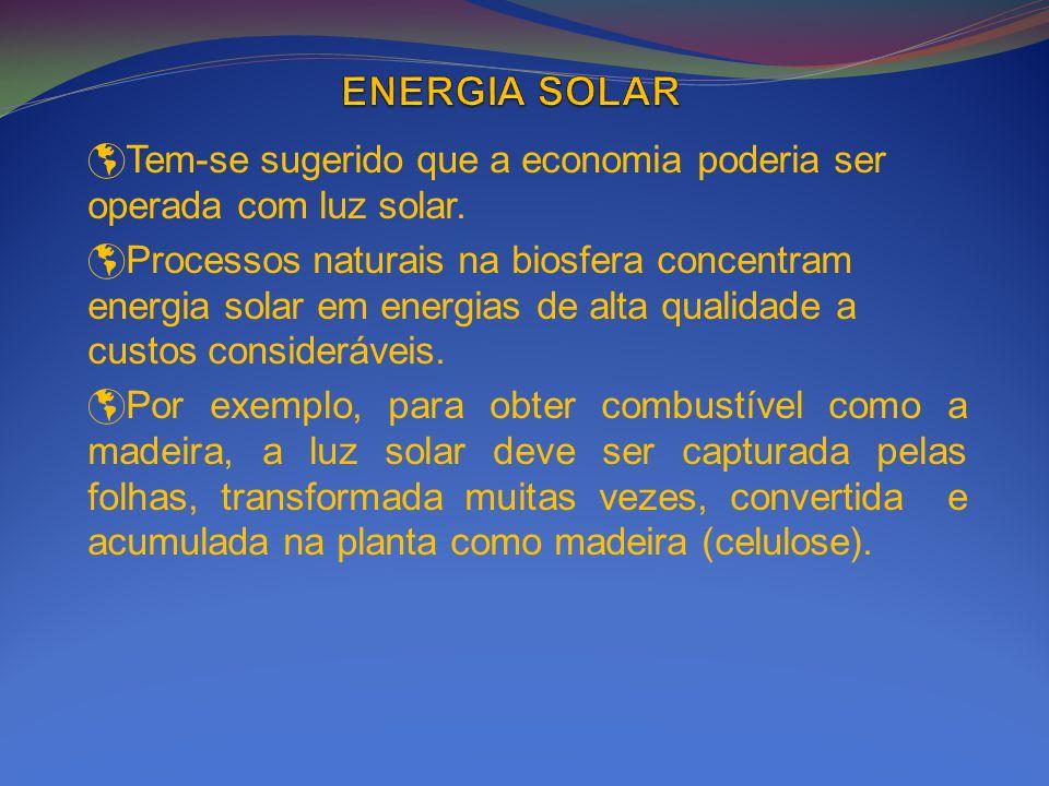 Tem-se sugerido que a economia poderia ser operada com luz solar. Processos naturais na biosfera concentram energia solar em energias de alta qualidad