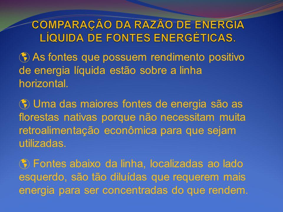 As fontes que possuem rendimento positivo de energia líquida estão sobre a linha horizontal. Uma das maiores fontes de energia são as florestas nativa
