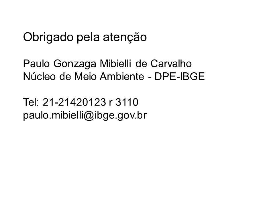 Obrigado pela atenção Paulo Gonzaga Mibielli de Carvalho Núcleo de Meio Ambiente - DPE-IBGE Tel: 21-21420123 r 3110 paulo.mibielli@ibge.gov.br