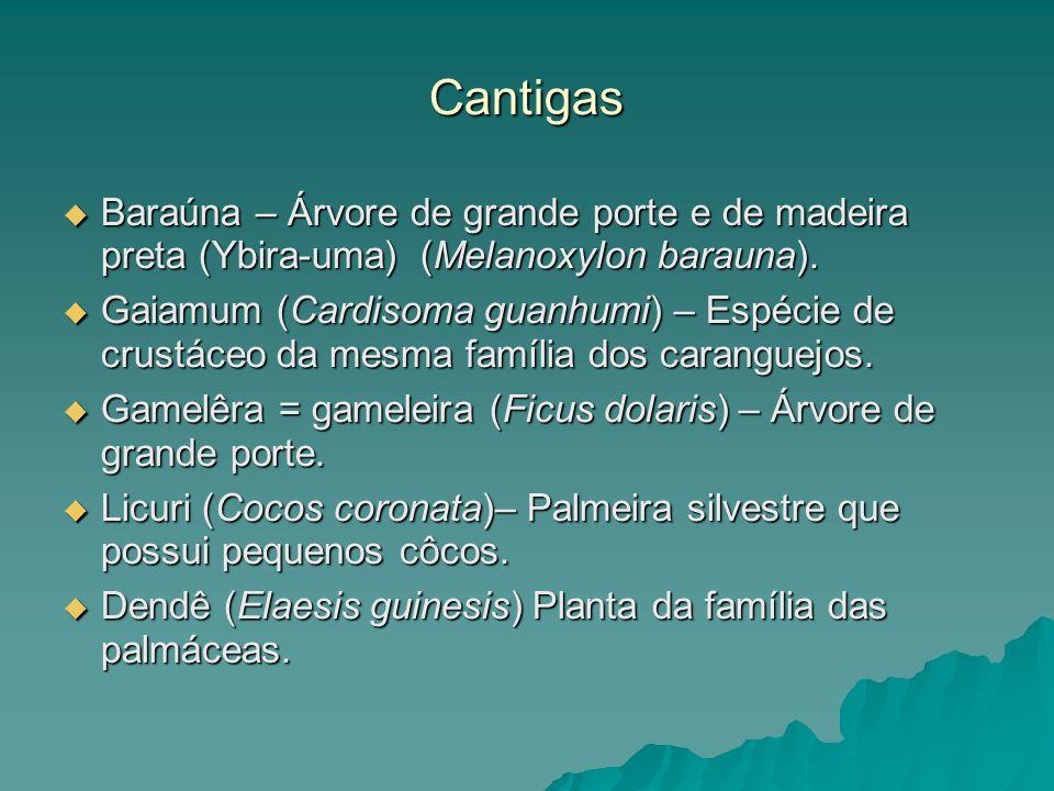 Cantigas Baraúna – Árvore de grande porte e de madeira preta (Ybira-uma) (Melanoxylon barauna). Baraúna – Árvore de grande porte e de madeira preta (Y
