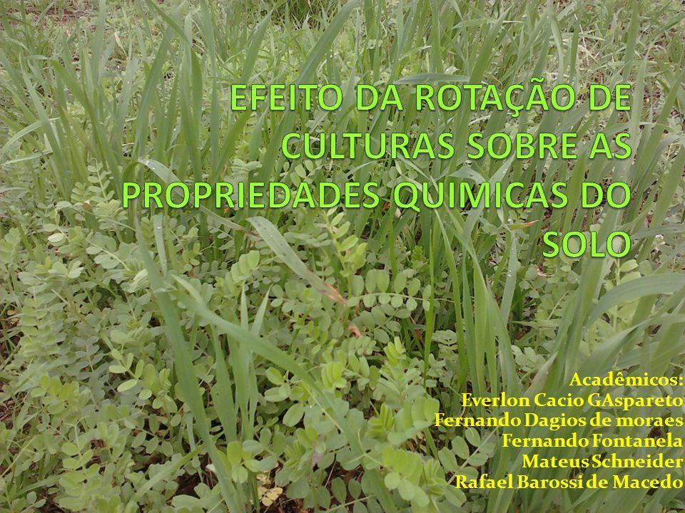 Experimento EMBRAPA Londrina Campo Mourão