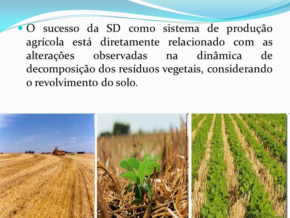 O sucesso da SD como sistema de produção agrícola está diretamente relacionado com as alterações observadas na dinâmica de decomposição dos resíduos vegetais, considerando o revolvimento do solo.