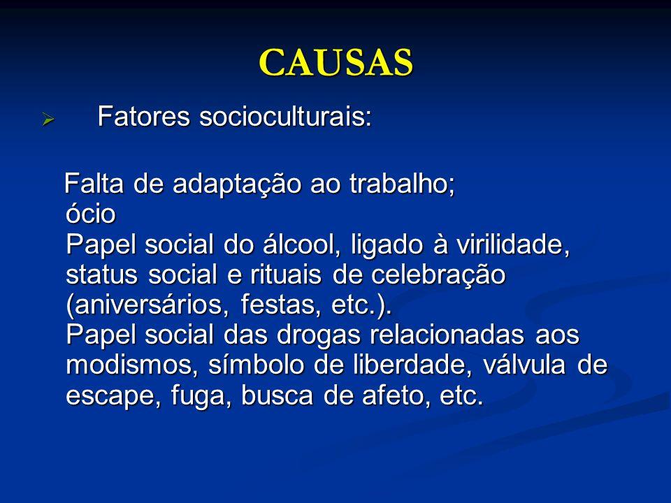 CAUSAS Fatores socioculturais: Fatores socioculturais: Falta de adaptação ao trabalho; ócio Papel social do álcool, ligado à virilidade, status social