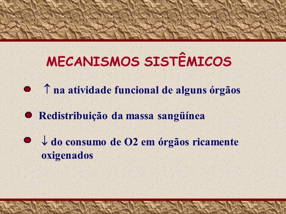 MECANISMOS SISTÊMICOS Redistribuição da massa sangüínea do consumo de O2 em órgãos ricamente oxigenados na atividade funcional de alguns órgãos