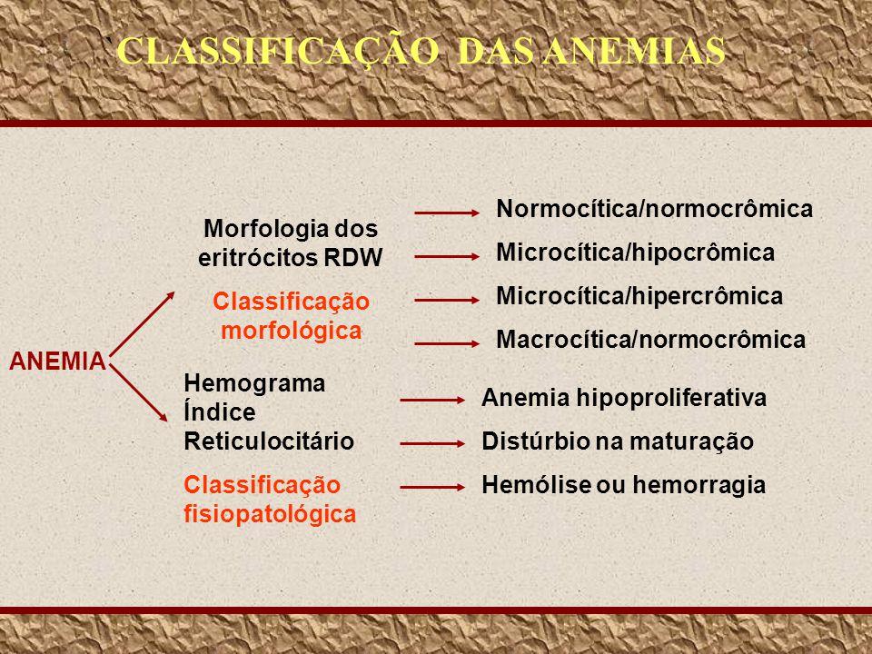 ANEMIA Morfologia dos eritrócitos RDW Classificação morfológica Hemograma Índice Reticulocitário Classificação fisiopatológica Normocítica/normocrômic