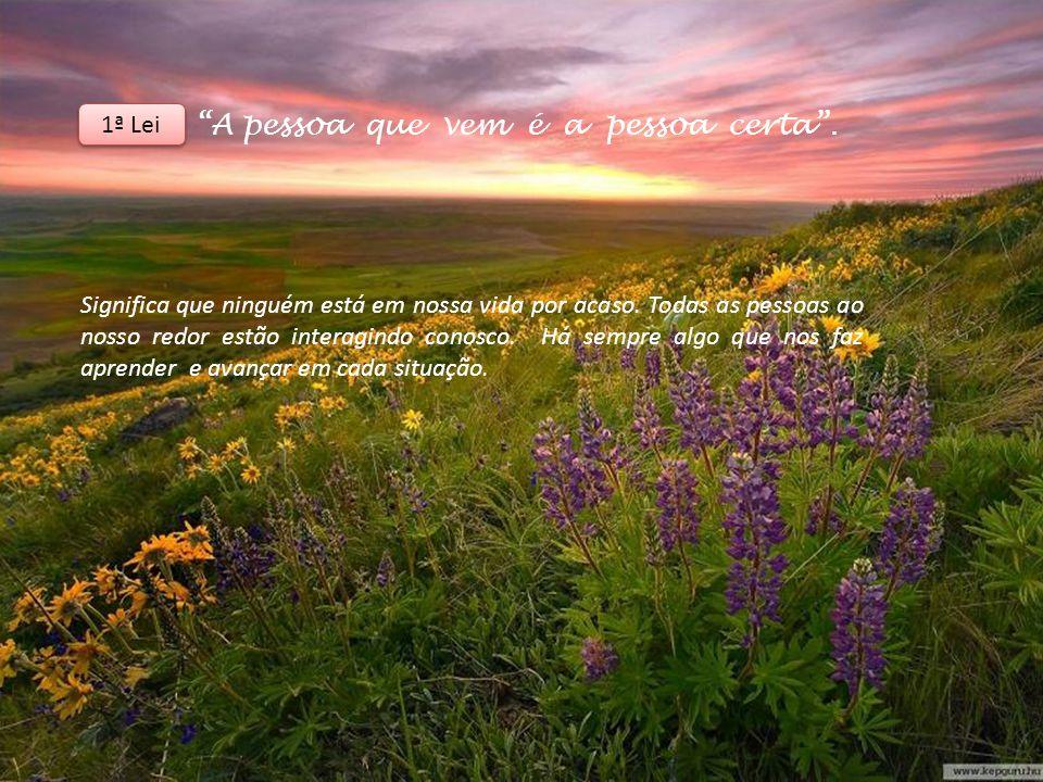 A pessoa que vem é a pessoa certa.Significa que ninguém está em nossa vida por acaso.