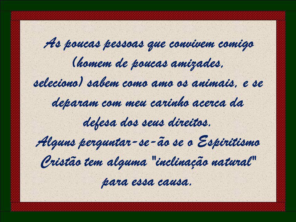 AH! ESSES ANIMAIS QUERIDOS NA ESPIRITUALIDADE !!! TRANSIÇÃO AUTOMÁTICA (OPCIONAL)