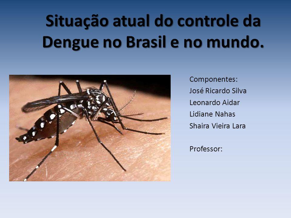 Situação atual do controle da Dengue no Brasil e no mundo. Componentes: José Ricardo Silva Leonardo Aidar Lidiane Nahas Shaira Vieira Lara Professor: