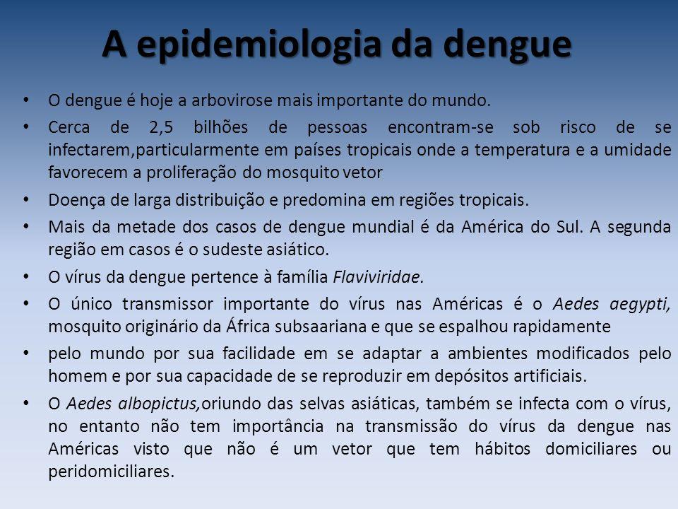 A epidemiologia da dengue O dengue é hoje a arbovirose mais importante do mundo. Cerca de 2,5 bilhões de pessoas encontram-se sob risco de se infectar