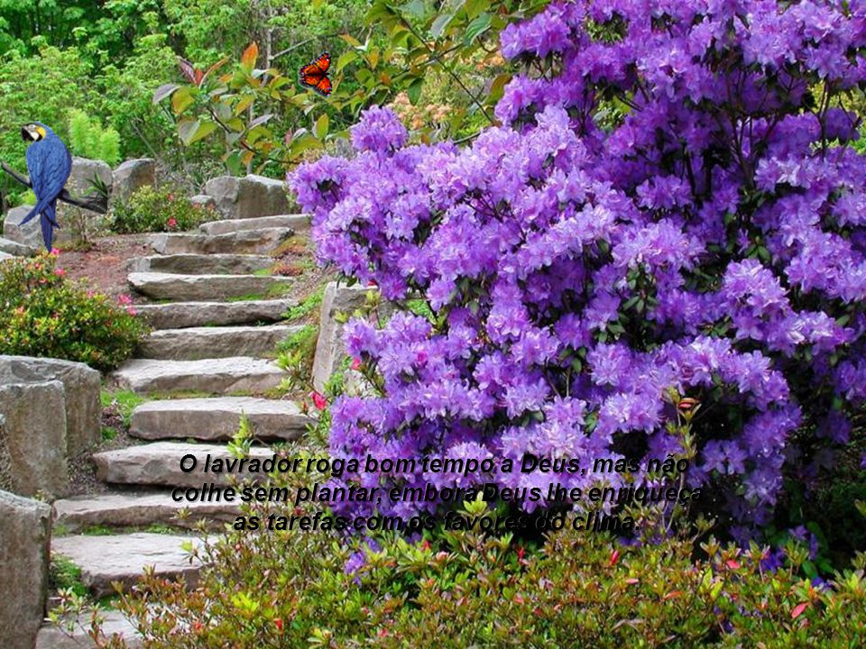 A inteligência do arquiteto, a força do obreiro, o apoio do solo; e os materiais empregados constituem dons da Eterna Sabedoria, o apoio do solo; e os