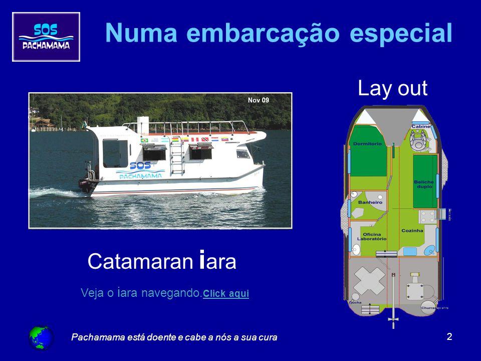 Pachamama está doente e cabe a nós a sua cura 2 Lay out Catamaran i ara Numa embarcação especial Veja o i ara navegando.