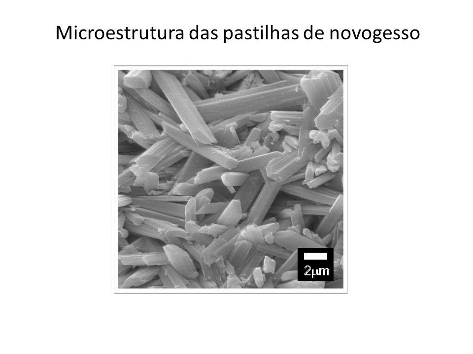 Microestrutura das pastilhas de novogesso