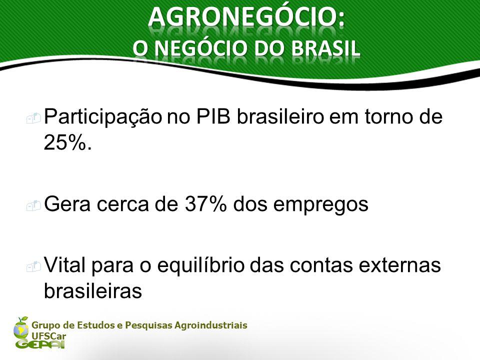Grupo de Estudos e Pesquisas Agroindustriais UFSCar Participação no PIB brasileiro em torno de 25%. Gera cerca de 37% dos empregos Vital para o equilí