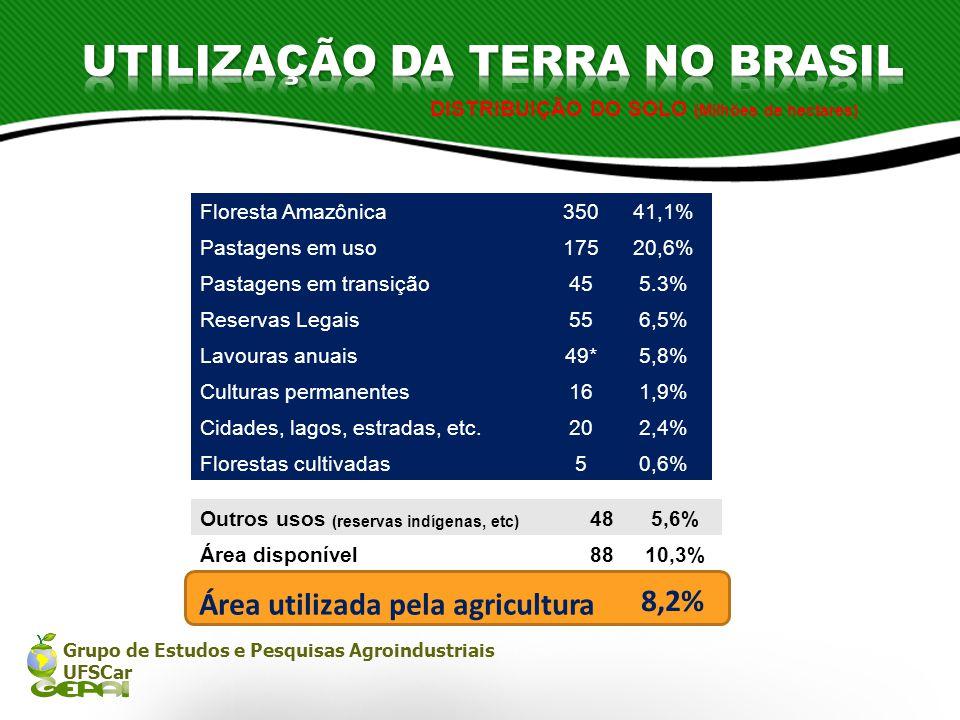 Grupo de Estudos e Pesquisas Agroindustriais UFSCar DISTRIBUIÇÃO DO SOLO (Milhões de hectares) 8,2% Área utilizada pela agricultura Floresta Amazônica