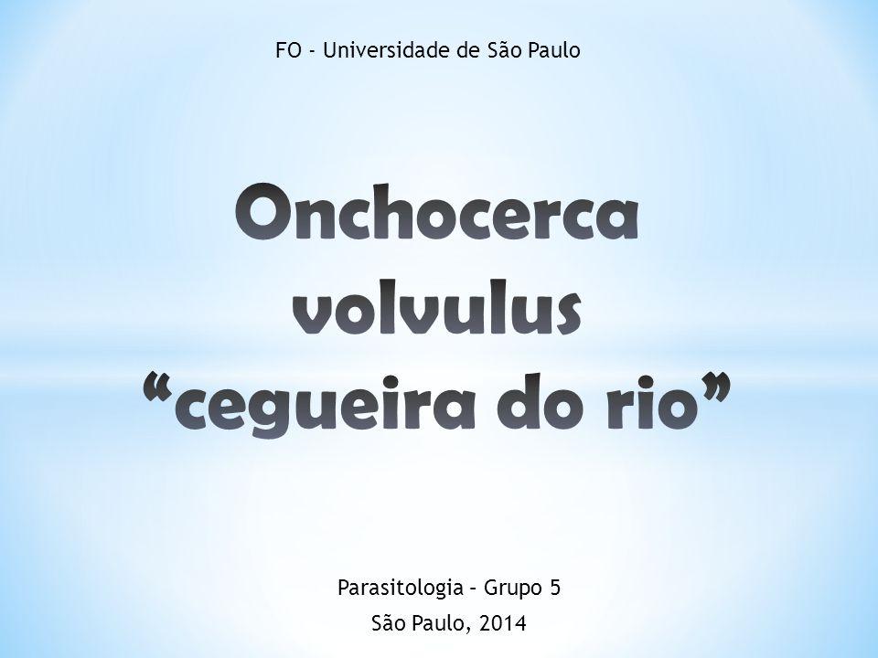 FO - Universidade de São Paulo São Paulo, 2014 Parasitologia – Grupo 5
