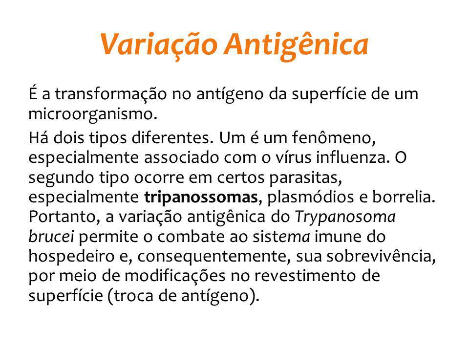 Variação Antigênica É a transformação no antígeno da superfície de um microorganismo. Há dois tipos diferentes. Um é um fenômeno, especialmente associ
