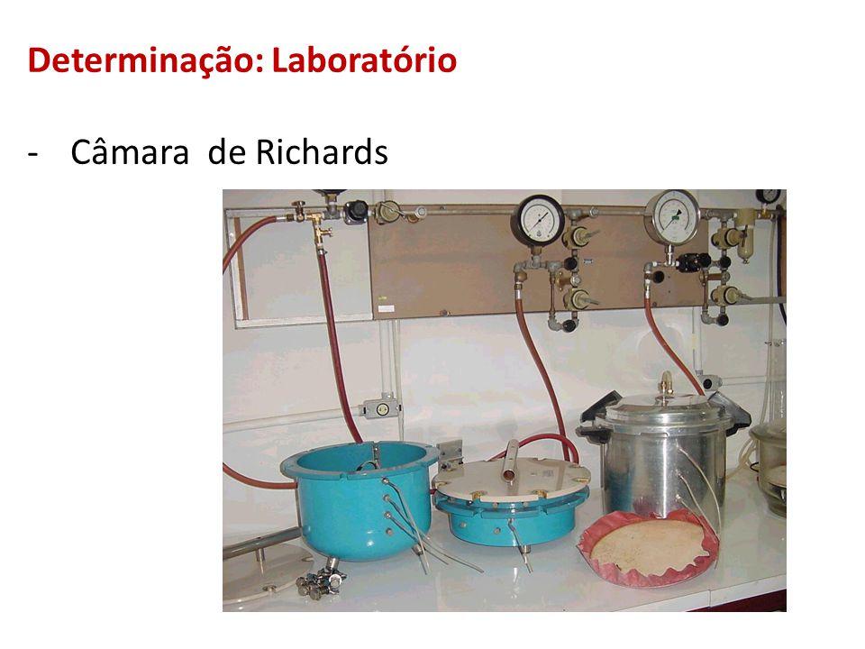 Determinação: Laboratório -Câmara de Richards