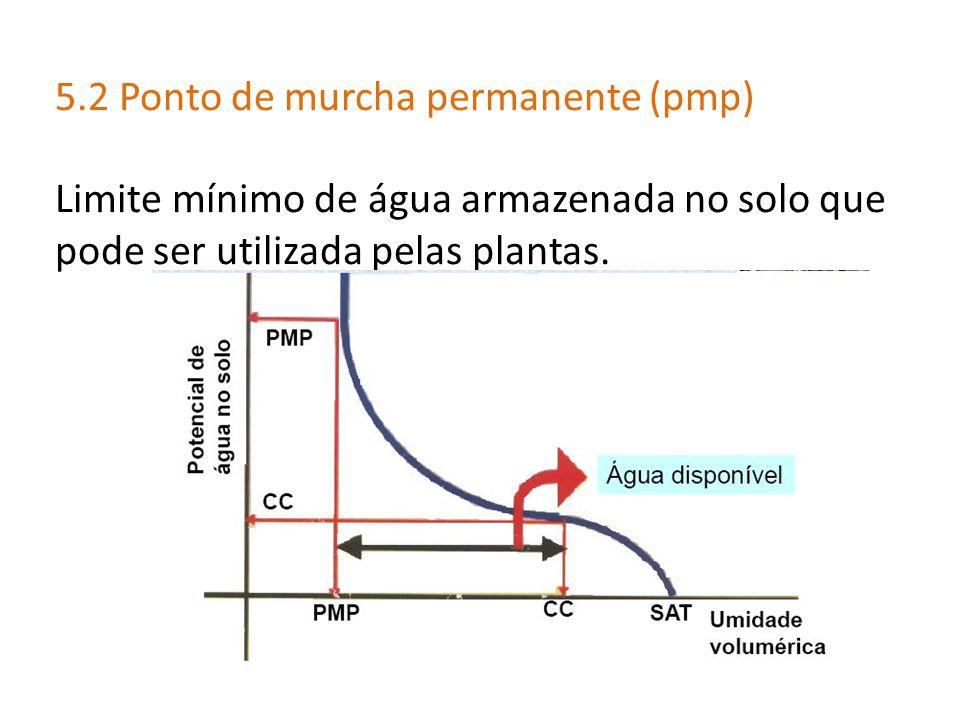 5.2 Ponto de murcha permanente (pmp) Limite mínimo de água armazenada no solo que pode ser utilizada pelas plantas.