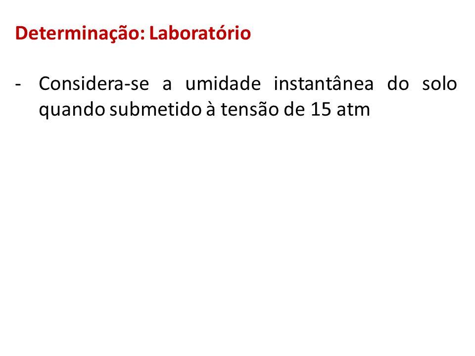 Determinação: Laboratório -Considera-se a umidade instantânea do solo quando submetido à tensão de 15 atm