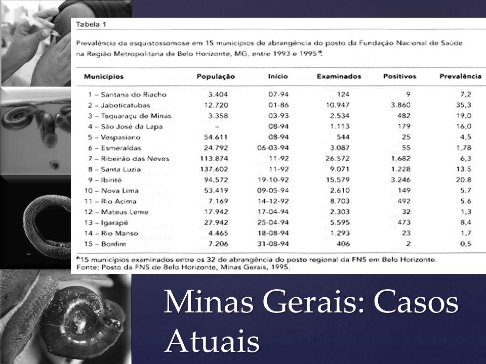 Minas Gerais: Casos Atuais