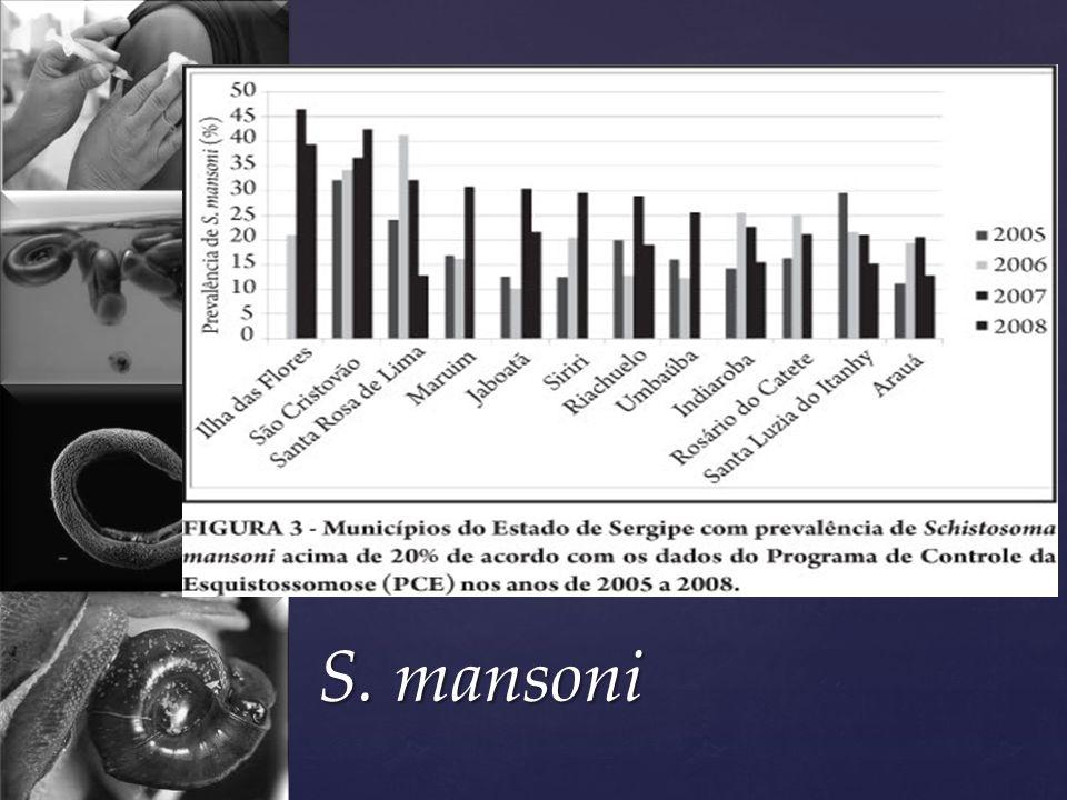 S. mansoni