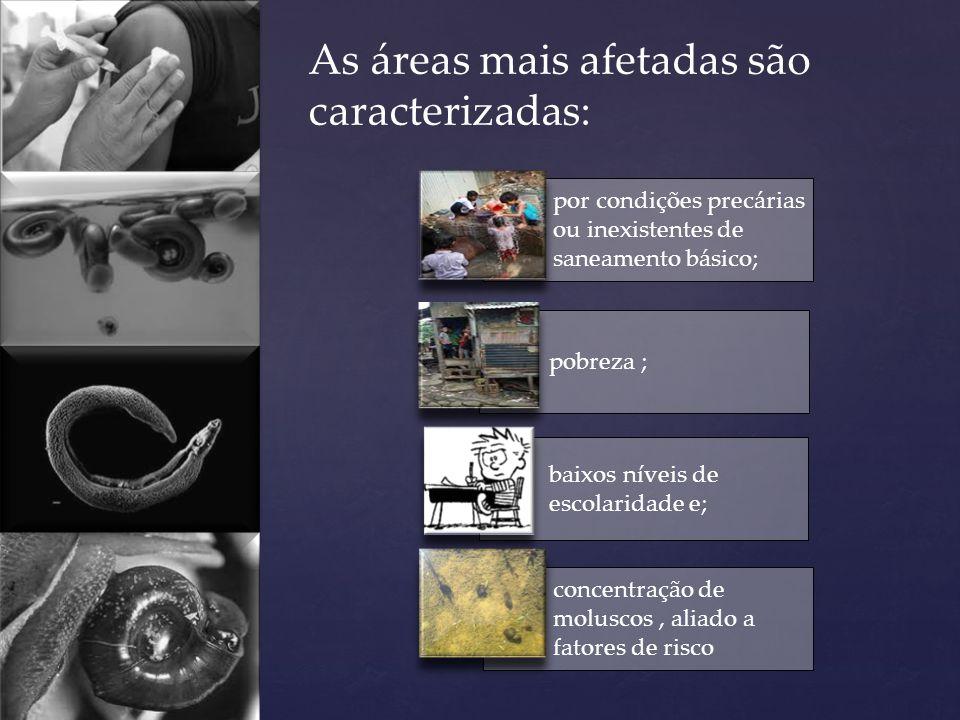 por condições precárias ou inexistentes de saneamento básico; pobreza ; baixos níveis de escolaridade e; concentração de moluscos, aliado a fatores de