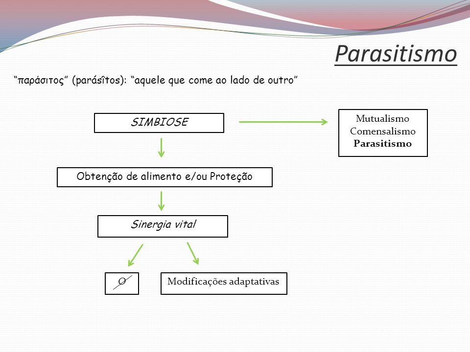 Parasitismo παράσιτος (parásîtos): aquele que come ao lado de outro Obtenção de alimento e/ou Proteção Sinergia vital O Modificações adaptativas SIMBIOSE Mutualismo Comensalismo Parasitismo