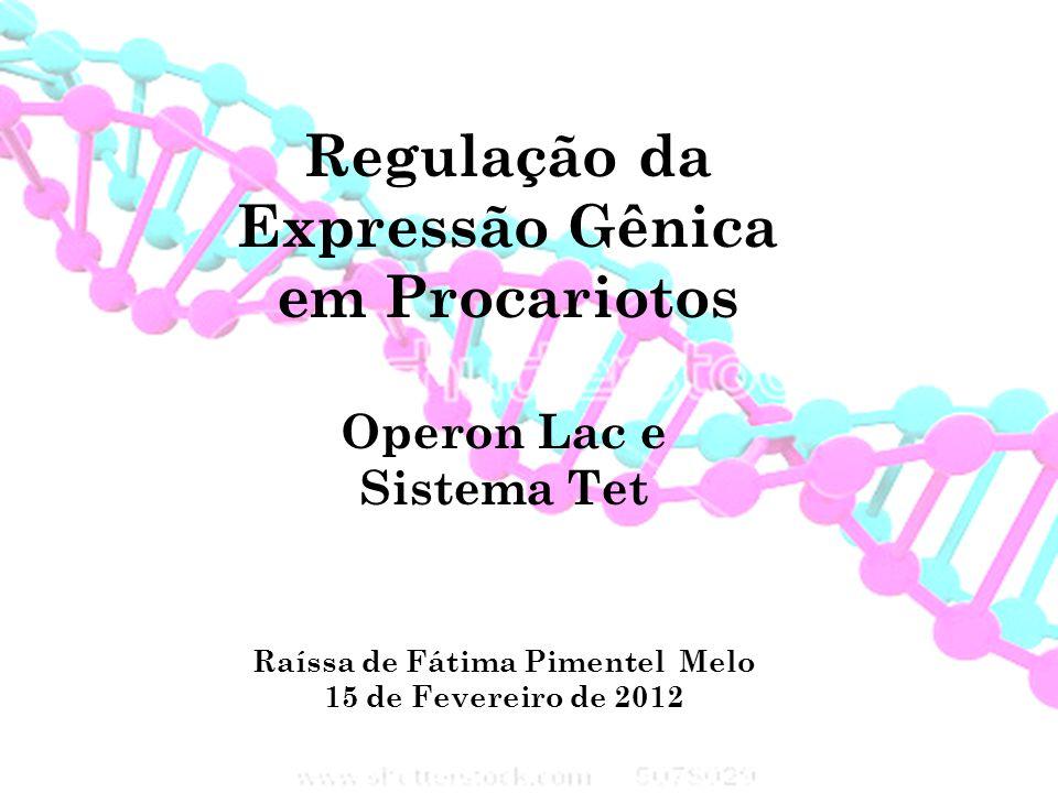 Regulação da Expressão Gênica em Procariotos Operon Lac e Sistema Tet Raíssa de Fátima Pimentel Melo 15 de Fevereiro de 2012