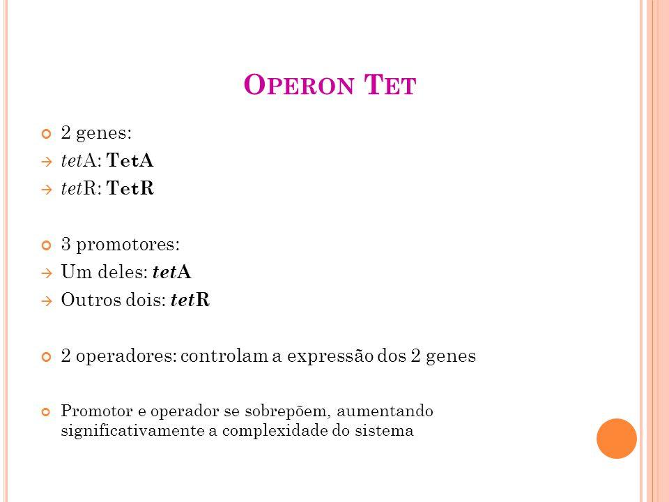 O PERON T ET 2 genes: tet A: TetA tet R: TetR 3 promotores: Um deles: tet A Outros dois: tet R 2 operadores: controlam a expressão dos 2 genes Promotor e operador se sobrepõem, aumentando significativamente a complexidade do sistema