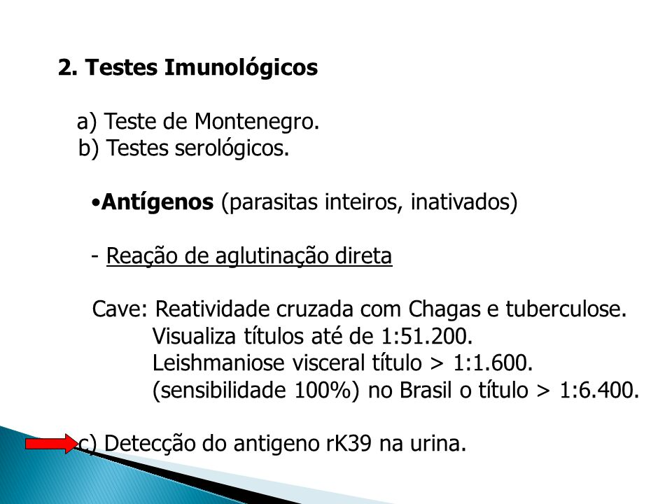 2. Testes Imunológicos a) Teste de Montenegro. b) Testes serológicos. Antígenos (parasitas inteiros, inativados) - Reação de aglutinação direta Cave: