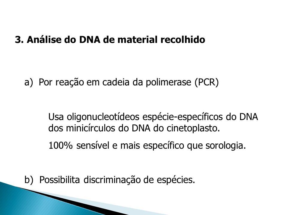 a)Por reação em cadeia da polimerase (PCR) Usa oligonucleotídeos espécie-específicos do DNA dos minicírculos do DNA do cinetoplasto. 100% sensível e m