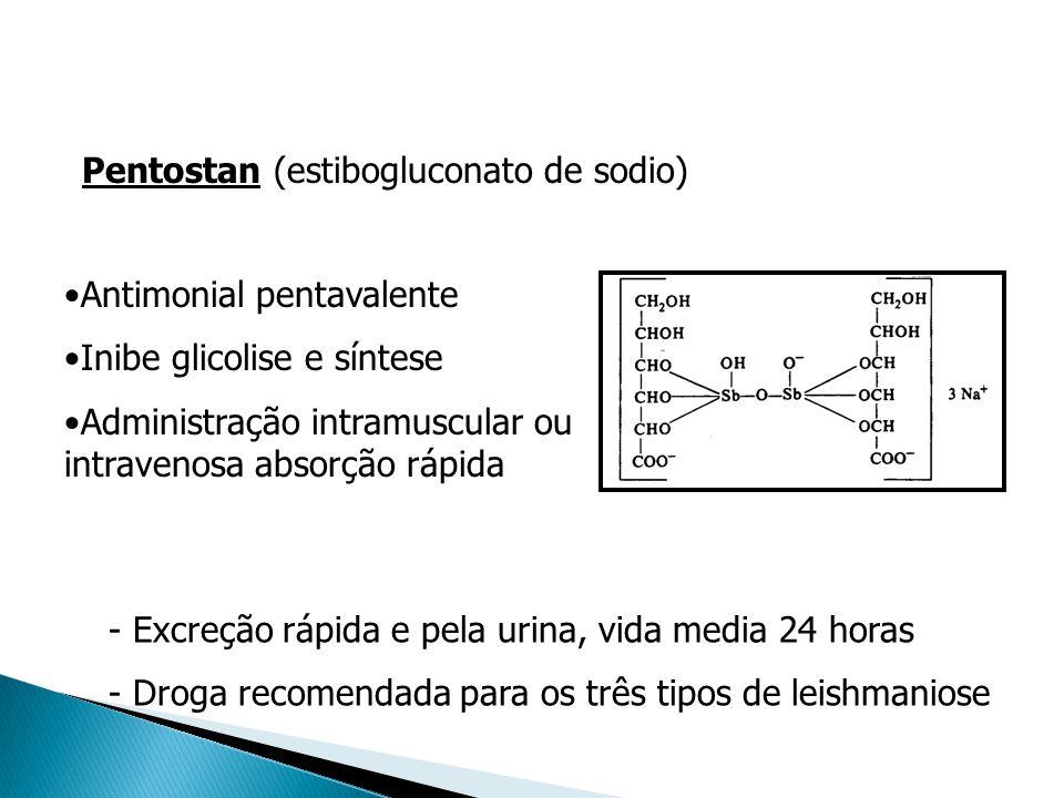 - Excreção rápida e pela urina, vida media 24 horas - Droga recomendada para os três tipos de leishmaniose Antimonial pentavalente Inibe glicolise e s