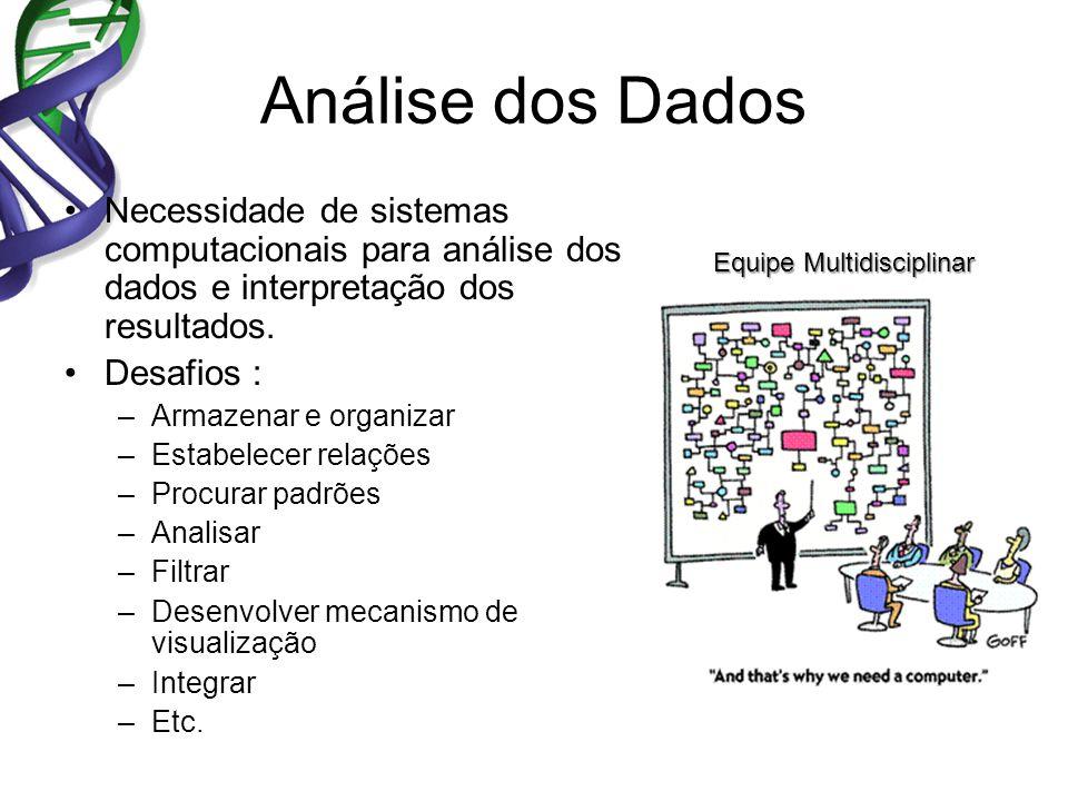 Análise dos Dados Necessidade de sistemas computacionais para análise dos dados e interpretação dos resultados. Desafios : –Armazenar e organizar –Est