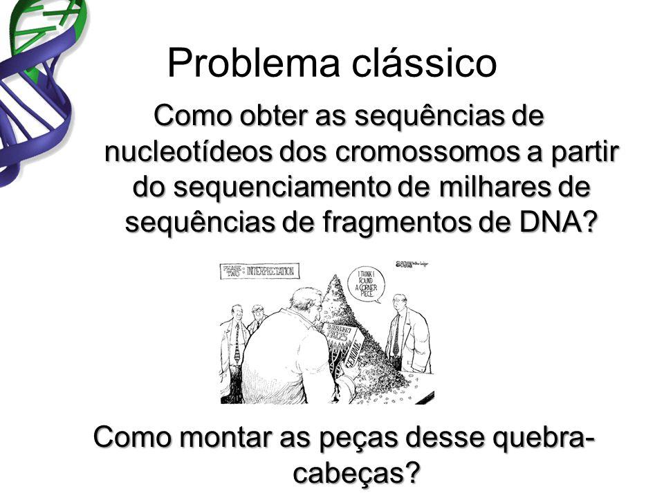 Problema clássico Como obter as sequências de nucleotídeos dos cromossomos a partir do sequenciamento de milhares de sequências de fragmentos de DNA.