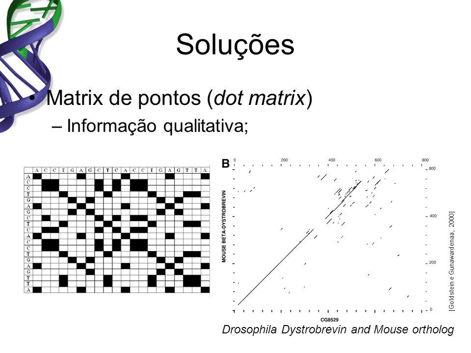 Soluções Matrix de pontos (dot matrix) –Informação qualitativa; Drosophila Dystrobrevin and Mouse ortholog [Goldstein e Gunawardenaa, 2000]