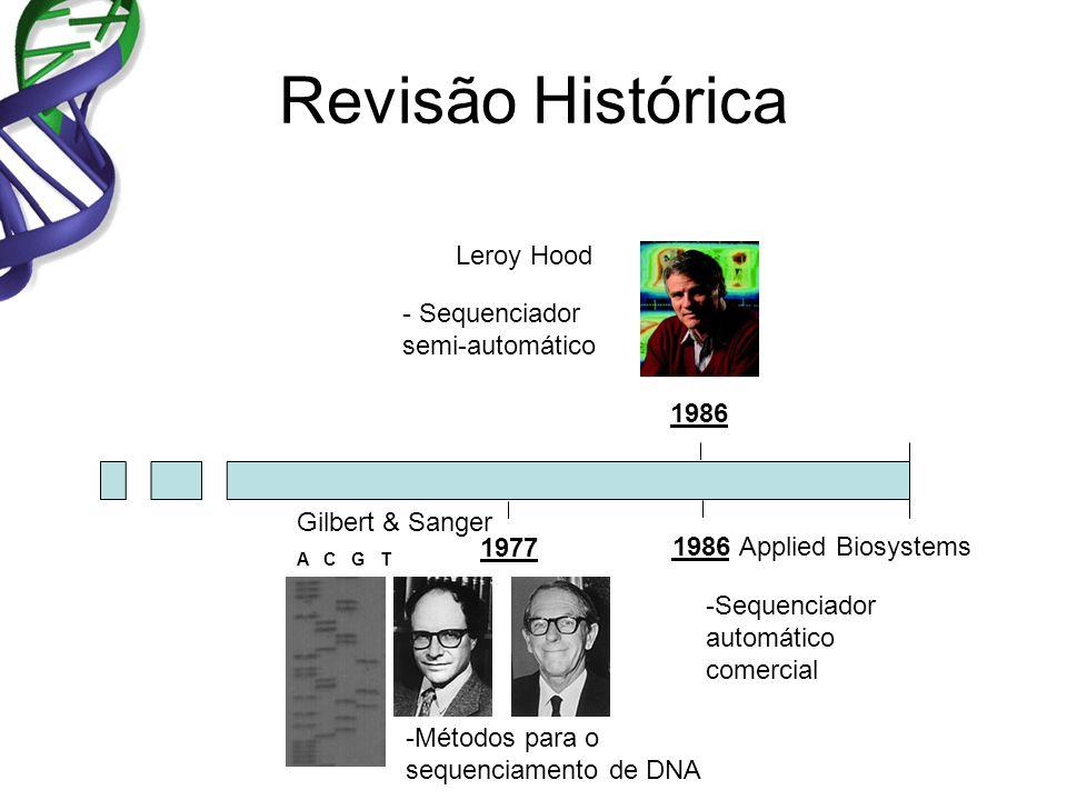 Revisão Histórica 1977 1986 Gilbert & Sanger -Métodos para o sequenciamento de DNA - Sequenciador semi-automático Leroy Hood 1986 -Sequenciador automático comercial Applied Biosystems A C G T