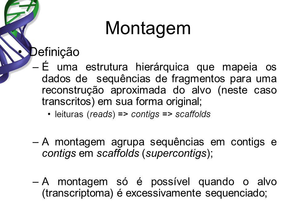 Montagem Definição –É uma estrutura hierárquica que mapeia os dados de sequências de fragmentos para uma reconstrução aproximada do alvo (neste caso transcritos) em sua forma original; leituras (reads) => contigs => scaffolds –A montagem agrupa sequências em contigs e contigs em scaffolds (supercontigs); –A montagem só é possível quando o alvo (transcriptoma) é excessivamente sequenciado;