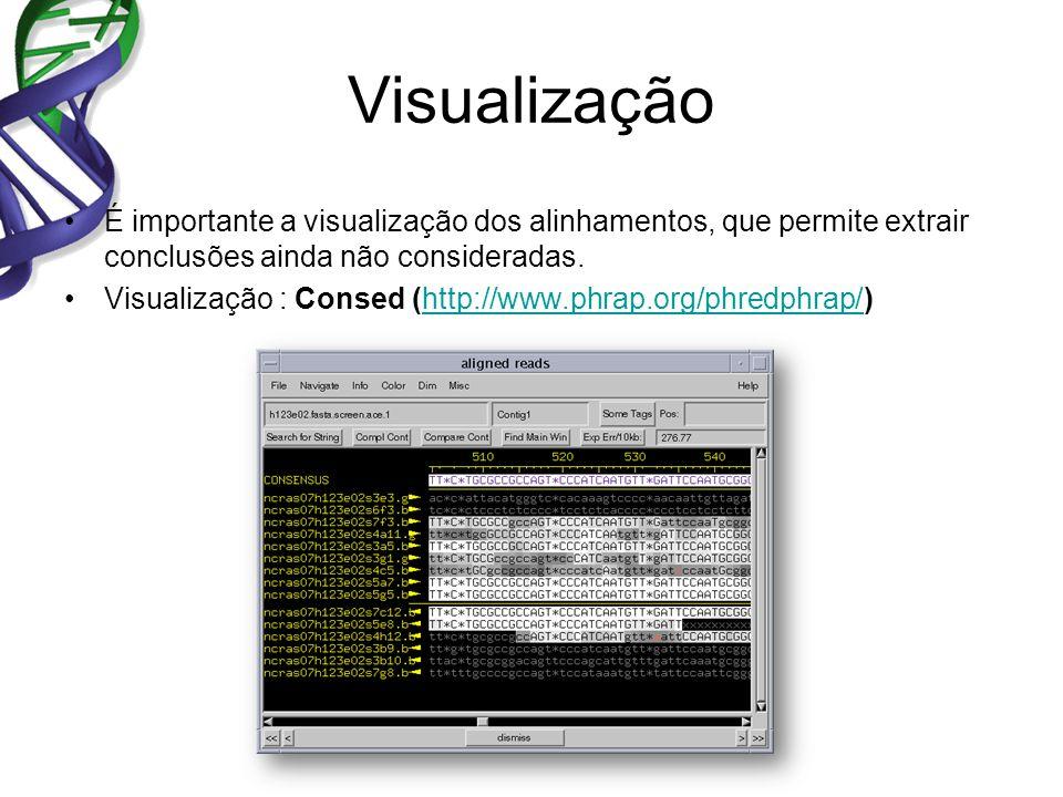 Visualização É importante a visualização dos alinhamentos, que permite extrair conclusões ainda não consideradas. Visualização : Consed (http://www.ph