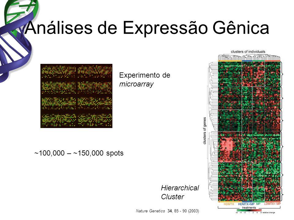 Análises de Expressão Gênica Experimento de microarray Nature Genetics 34, 85 - 90 (2003) Hierarchical Cluster ~100,000 – ~150,000 spots