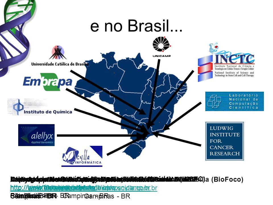e no Brasil... Ludwig Institute for Cancer Research – São Paulo Branch http://www.ludwig.org.br São Paulo - BR Laboratório Nacional de Computação Cien