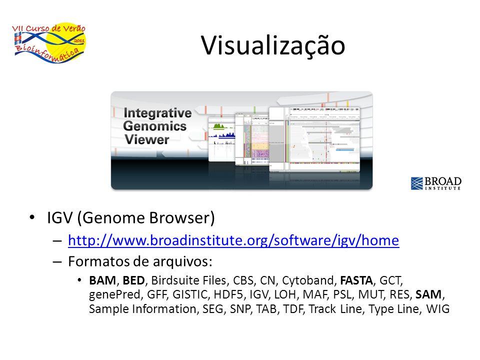 Visualização IGV (Genome Browser) – http://www.broadinstitute.org/software/igv/home http://www.broadinstitute.org/software/igv/home – Formatos de arqu