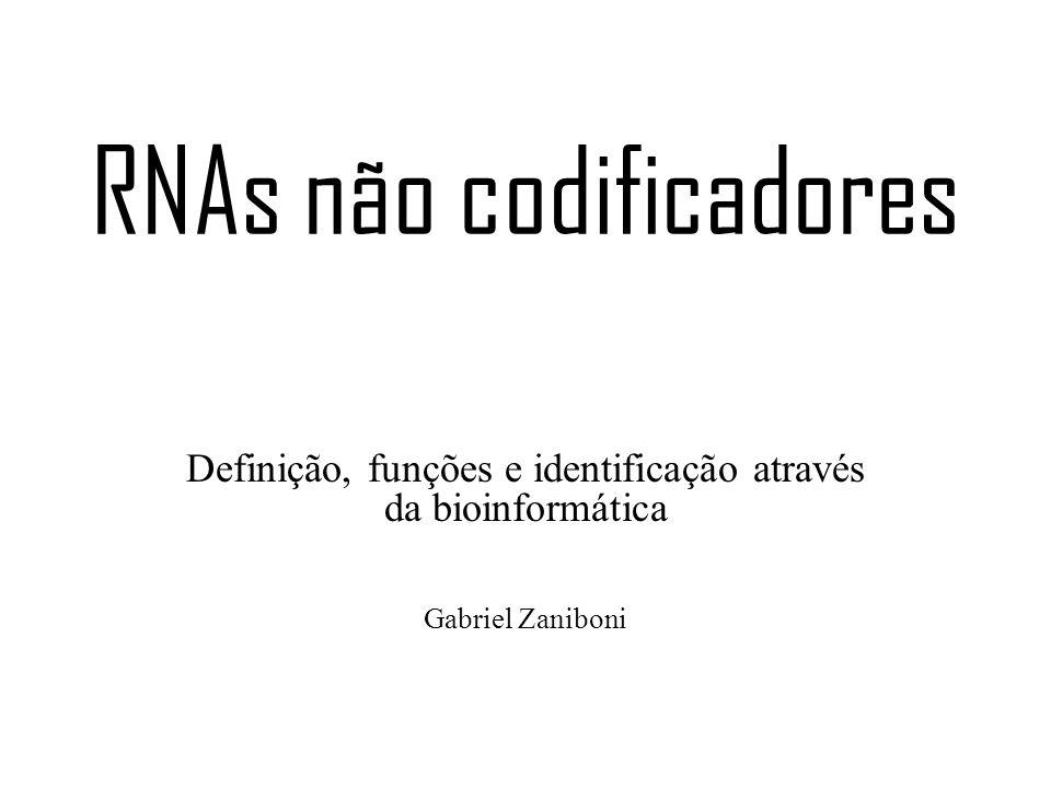 RNAs não codificadores Definição, funções e identificação através da bioinformática Gabriel Zaniboni